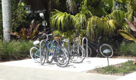 Bicycle and Pedestrian Advisory Committee 1